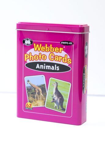 Webber Photo Cards - Animals