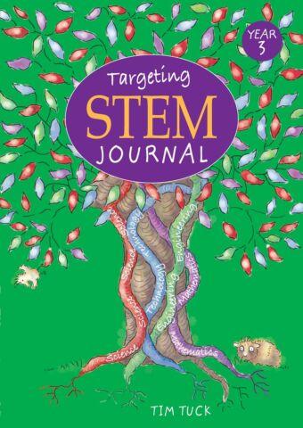 Targeting STEM: Year 3
