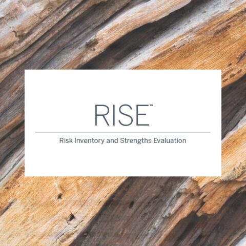 RISE Online Manual